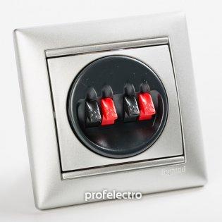 770124 Розетка акустическая двойная алюминий с рамкой Valena Legrand на profelectro.com.ua