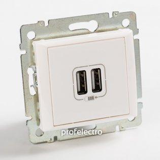 770470 Зарядное устройство USB белое без рамки 16А, 250В Valena Legrand на profelectro.com.ua