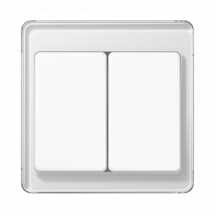 Фото JUNG_SL500_white_2-gang-switch.png
