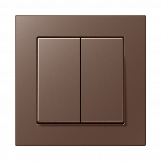 Фото 55JUNG_AC_mocha_2-gang-switch.png